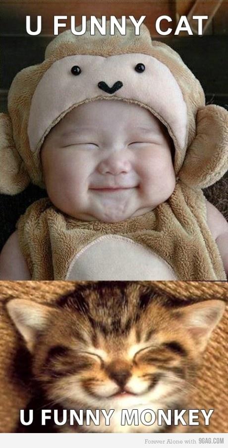 Cosplay de gatinho