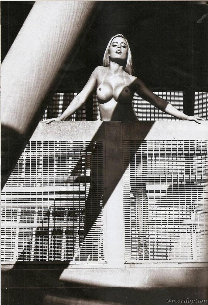 Playboy Aryane Steinkopf