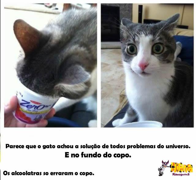 copo yogurte