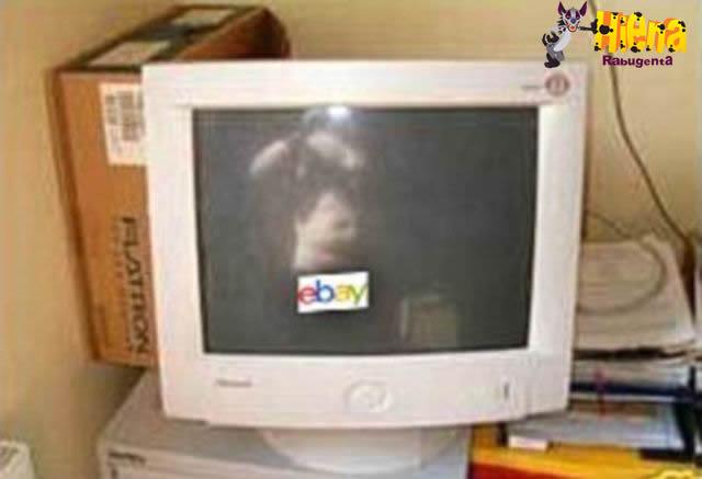vendedor ebay 4