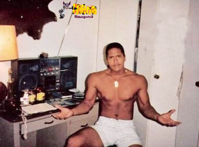 the rock 15 anos