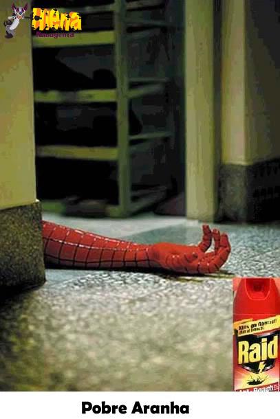 pobre aranha raid